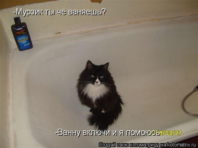 Котоматрица: -Мурзик ты чё ваняешь? -Ванну включи и я помоюсь