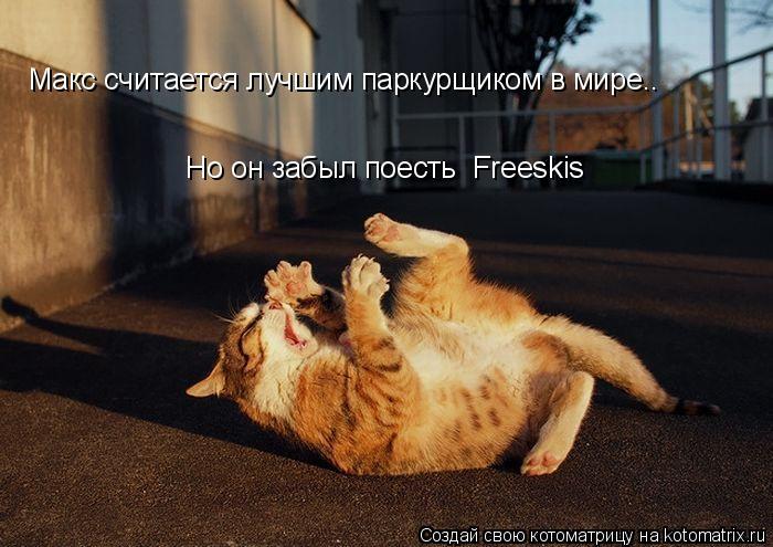 Котоматрица: Макс считается лучшим паркурщиком в мире.. Но он забыл поесть  Freeskis