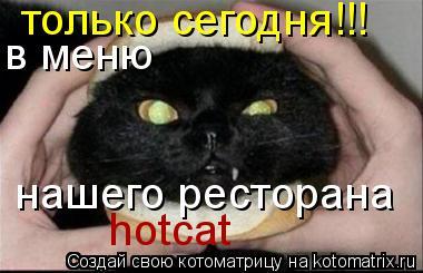 Котоматрица: только сегодня!!! в меню  нашего ресторана hotcat