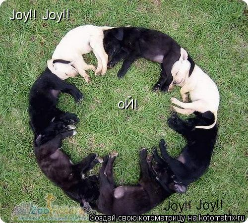 Котоматрица: Joy!! Joy!! Joy!! Joy!! оЙ!