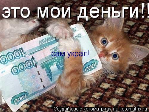 Котоматрица: это мои деньги!!! сам украл!
