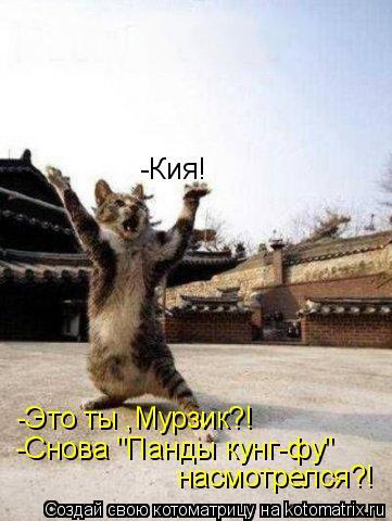 """Котоматрица: -Кия! -Это ты ,Мурзик?!  -Снова """"Панды кунг-фу""""   насмотрелся?!"""