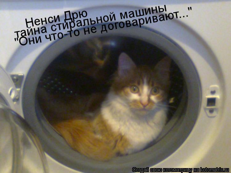 """Котоматрица: Ненси Дрю тайна стиральной машины """"Они что-то не договаривают..."""""""