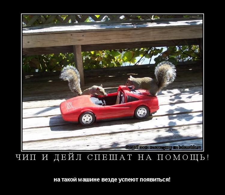 Котоматрица: Чип и Дейл спешат на помощь! на такой машине везде успеют появиться!