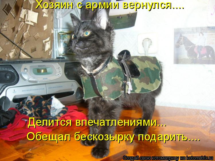 Котоматрица: Хозяин с армии вернулся…... Обещал бескозырку подарить…... Делится впечатлениями….…