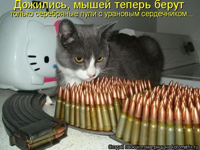Котоматрица: Дожились, мышей теперь берут  только серебряные пули с урановым сердечником...