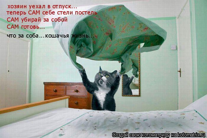 Котоматрица: хозяин уехал в отпуск... теперь САМ себе стели постель САМ убирай за собой САМ готовь... что за соба...кошачья жизнь...