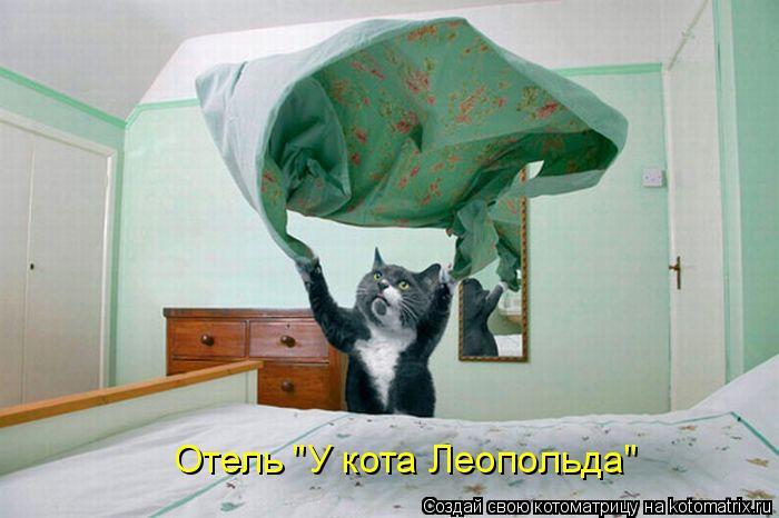 """Котоматрица: Отель """"У кота Леопольда"""""""