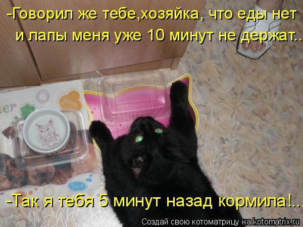 Котоматрица: -Говорил же тебе,хозяйка, что еды нет  и лапы меня уже 10 минут не держат.... -Так я тебя 5 минут назад кормила!...