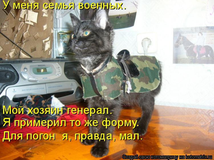 Котоматрица: У меня семья военных.  Для погон  я, правда, мал. Я примерил то же форму.  Мой хозяин генерал.