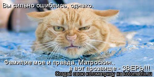 Котоматрица: Фамилие мое и правда, Матроскин.. а вот прозвище - ЗВЕРЬ!!! Вы сильно ошиблись, однако.