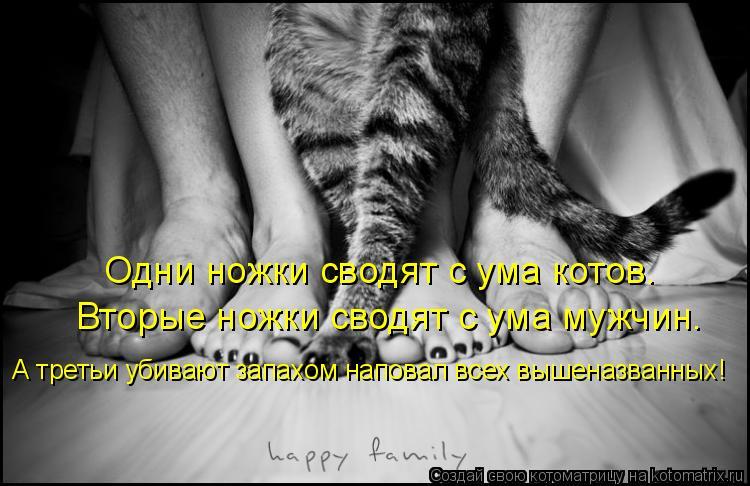 Котоматрица: Одни ножки сводят с ума котов. Вторые ножки сводят с ума мужчин. А третьи убивают запахом наповал всех вышеназванных!
