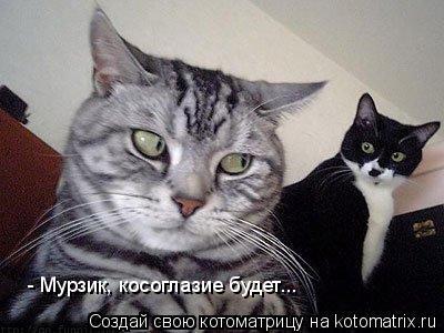 Котоматрица: - Мурзик, косоглазие будет...
