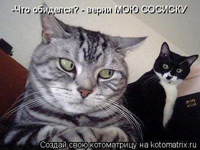 Котоматрица: -Что обиделся? - верни МОЮ СОСИСКУ