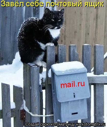 Котоматрица: mail.ru Завёл себе почтовый ящик