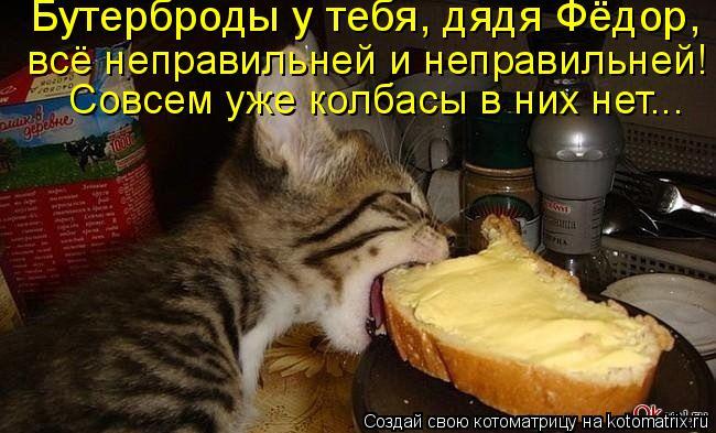 Котоматрица: Бутерброды у тебя, дядя Фёдор,  всё неправильней и неправильней!  Совсем уже колбасы в них нет...