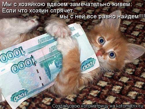 Котоматрица: Мы с хозяйкою вдвоем замечательно живем: Если что хозяин спрячет, мы с ней все равно найдем!!!
