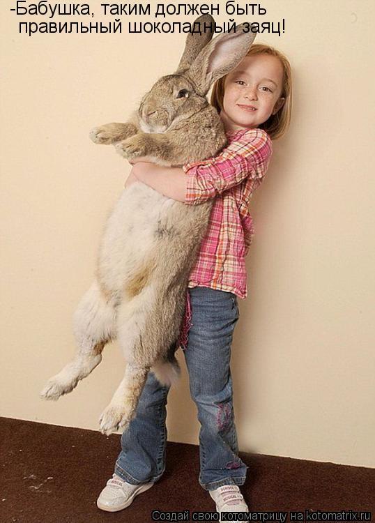 Котоматрица: -Бабушка, таким должен быть  правильный шоколадный заяц!