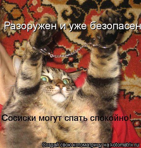 Котоматрица: Разоружен и уже безопасен Сосиски могут спать спокойно! Сосиски могут спать спокойно!