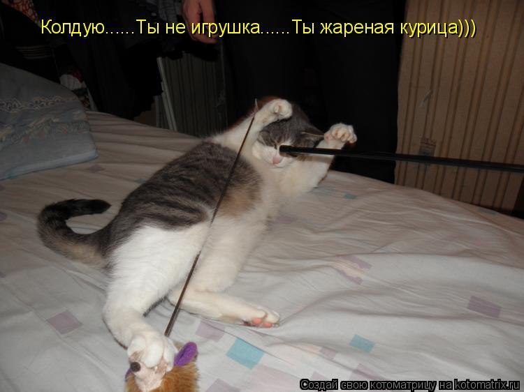 Котоматрица: Колдую......Ты не игрушка......Ты жареная курица)))