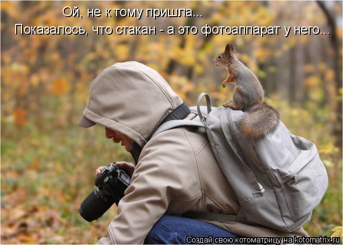 Котоматрица: Ой, не к тому пришла...  Показалось, что стакан - а это фотоаппарат у него...