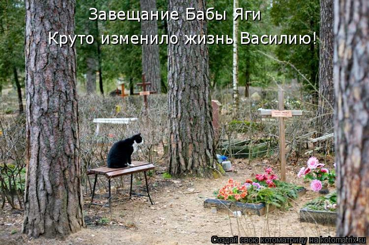 Котоматрица: Завещание Бабы Яги Круто изменило жизнь Василию!
