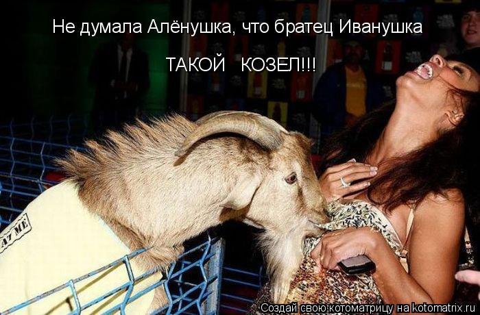 Котоматрица: Не думала Алёнушка, что братец Иванушка ТАКОЙ   КОЗЕЛ!!!