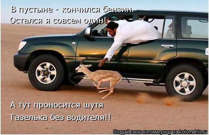 Котоматрица: Остался я совсем один! Газелька без водителя!! В пустыне - кончился бензин.  А тут проносится шутя