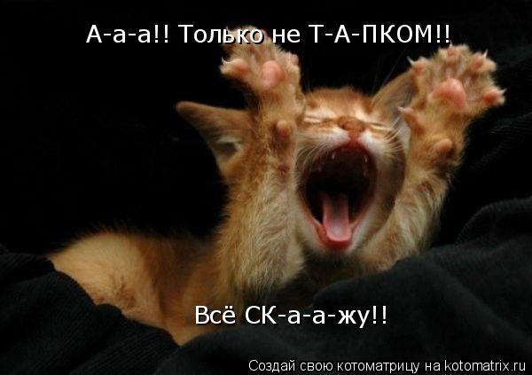 Котоматрица: А-а-а!! Только не Т-А-ПКОМ!! Всё СК-а-а-жу!!