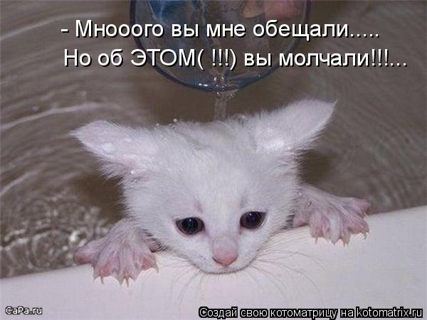Котоматрица: - Мнооого вы мне обещали..... Но об ЭТОМ( !!!) вы молчали!!!...