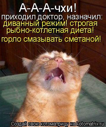 Котоматрица: горло смазывать сметаной! приходил доктор, назначил: А-А-А-чхи! диванный режим! строгая рыбно-котлетная диета!