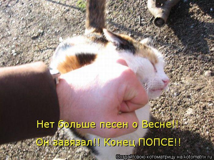 Котоматрица: Нет больше песен о Весне!! Он завязал!! Конец ПОПСЕ!!