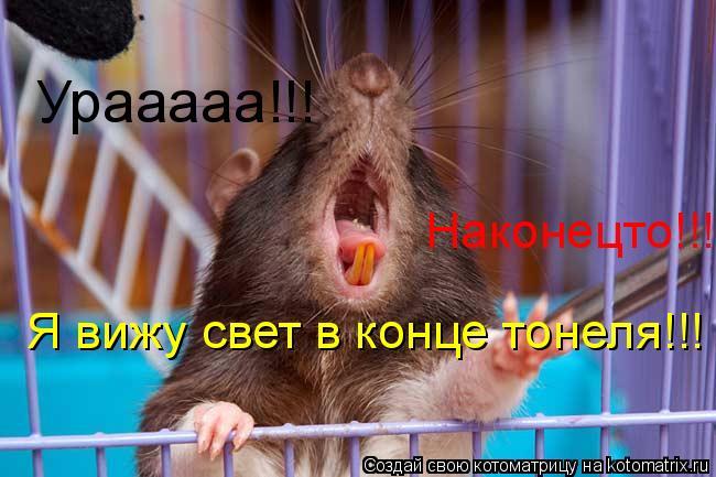 Котоматрица: Урааааа!!! Я вижу свет в конце тонеля!!!  Я вижу свет в конце тонеля!!!  Наконецто!!!