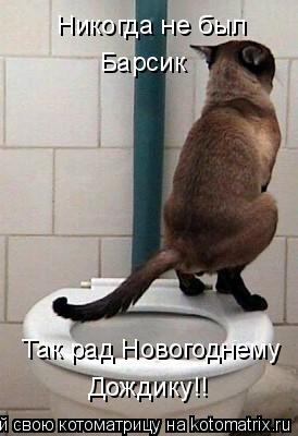 Котоматрица: Никогда не был  Барсик Так рад Новогоднему Дождику!!