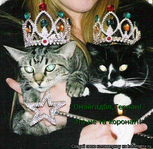 Котоматрица: Омайгадбл,Герман! Это не та корона!!!
