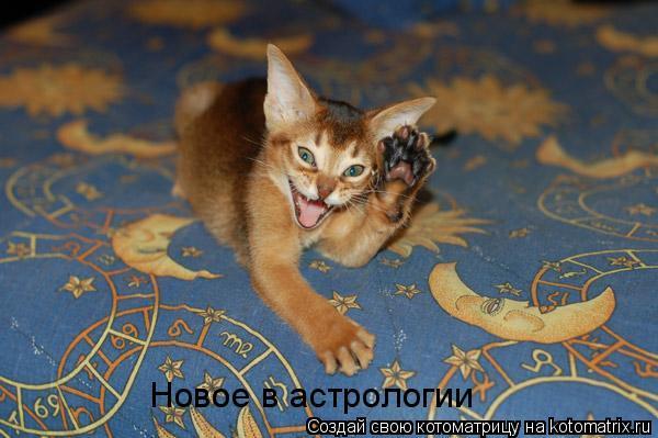 Котоматрица: Новое в астрологии