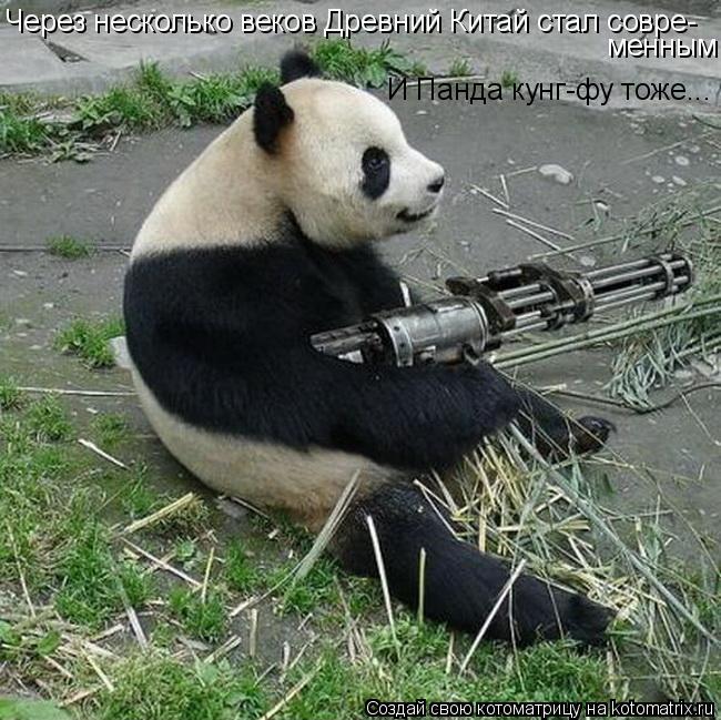 Котоматрица: Через несколько веков Древний Китай стал совре- менным И Панда кунг-фу тоже...