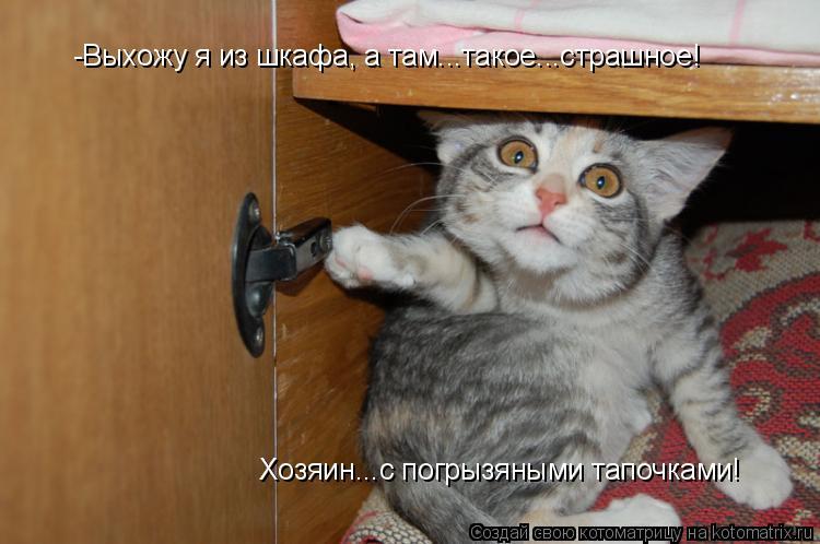 Котоматрица: -Выхожу я из шкафа, а там...такое...страшное! Хозяин...с погрызяными тапочками!