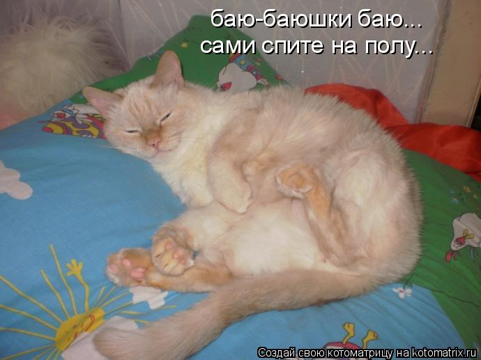 Котоматрица: баю-баюшки баю... сами спите на полу...