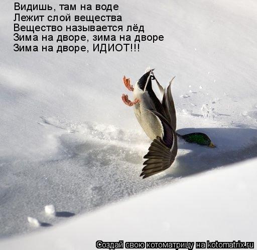 Котоматрица: Видишь, там на воде Лежит слой вещества Вещество называется лёд Зима на дворе, зима на дворе Зима на дворе, ИДИОТ!!!