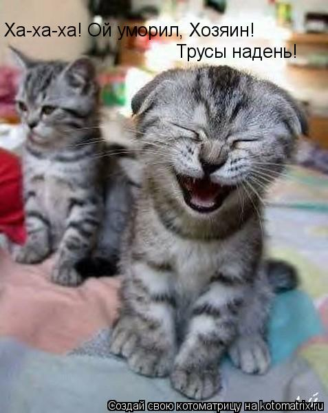 Котоматрица: Ха-ха-ха! Ой уморил, Хозяин! Трусы надень!