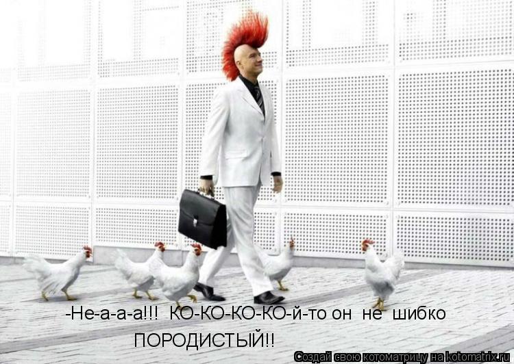 Котоматрица: -Не-а-а-а!!!  КО-КО-КО-КО-й-то он  не  шибко ПОРОДИСТЫЙ!!