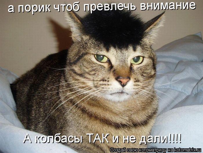 Котоматрица: А колбасы ТАК и не дали!!!! а порик чтоб превлечь внимание