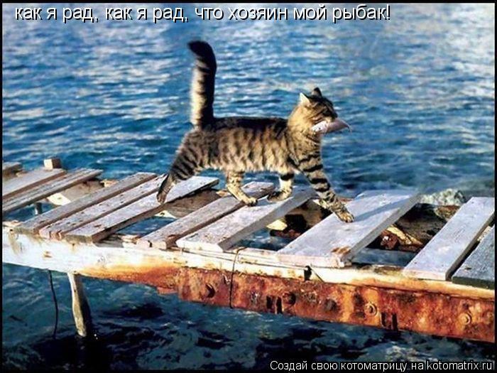 Котоматрица: как я рад, как я рад, что хозяин мой рыбак!