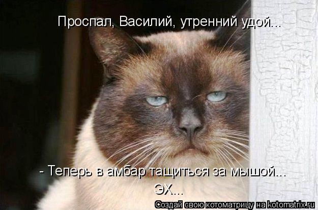 Котоматрица: Проспал, Василий, утренний удой... - Теперь в амбар тащиться за мышой... ЭХ...