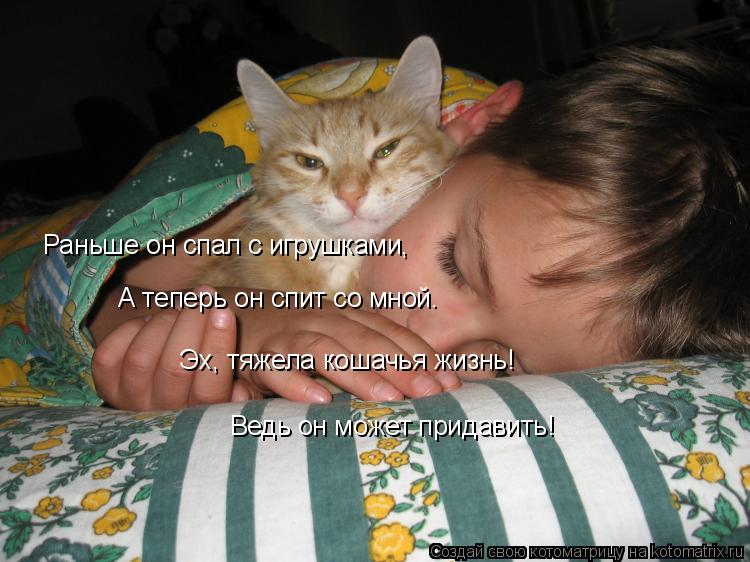 Котоматрица: Раньше он спал с игрушками,  А теперь он спит со мной. Эх, тяжела кошачья жизнь! Ведь он может придавить!
