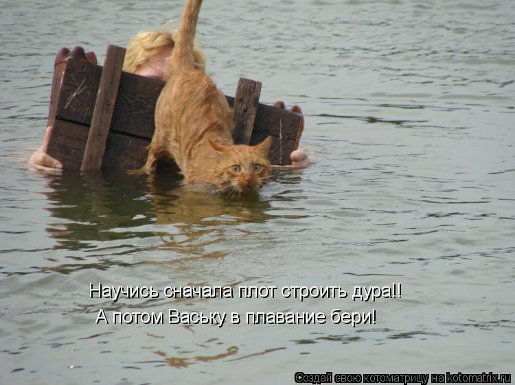 Котоматрица: Научись сначала плот строить дура!! А потом Ваську в плавание бери!