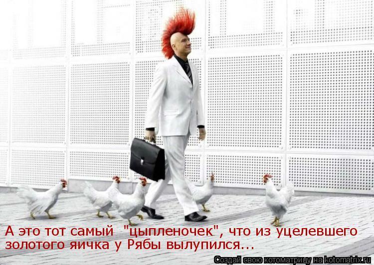 """Котоматрица: А это тот самый  """"цыпленочек"""", что из уцелевшего золотого яичка у Рябы вылупился..."""
