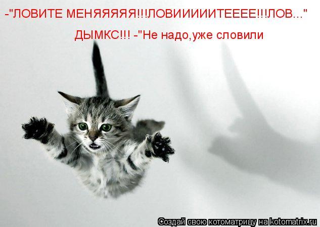 "Котоматрица: -""ЛОВИТЕ МЕНЯЯЯЯЯ!!!ЛОВИИИИИТЕЕЕЕ!!!ЛОВ...""     ДЫМКС!!! -""Не надо,уже словили      ДЫМКС!!! -""Не надо,уже словили"