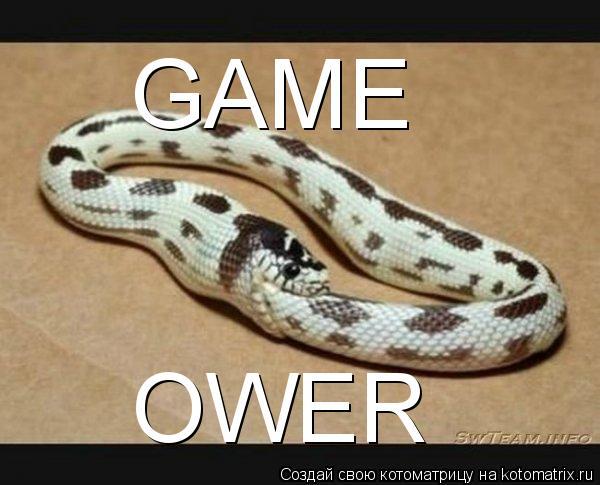 Котоматрица: GAME OWER